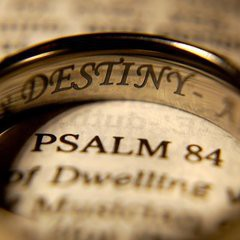 dotspin-ring-destiny-bible-psalm-tim-slusher